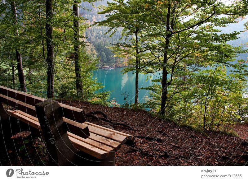 verweilen Natur Ferien & Urlaub & Reisen blau grün Baum Erholung Einsamkeit Landschaft ruhig Wald Herbst See braun Idylle Tourismus Ausflug