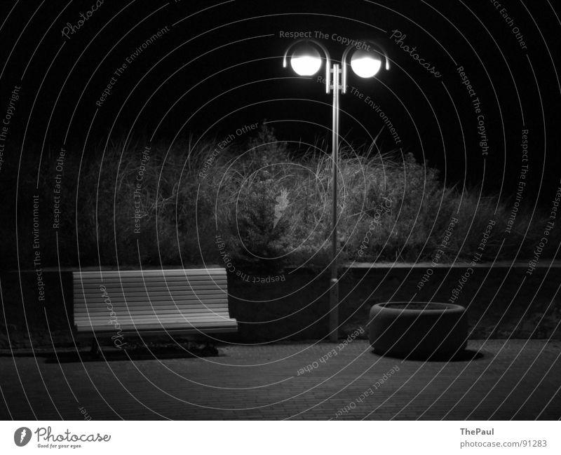 Leuchtende Sterne Laterne Straßenbeleuchtung Sträucher Nacht dunkel Trauer Einsamkeit Zufriedenheit Langzeitbelichtung Außenaufnahme Schwarzweißfoto Garten Park