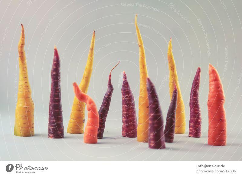 Karotten Lebensmittel Möhre Ernährung Bioprodukte Vegetarische Ernährung frisch Gesundheit gelb orange Farbfoto Innenaufnahme Studioaufnahme Menschenleer