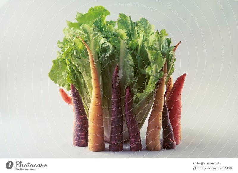 Gemüse Lebensmittel Salat Salatbeilage Ernährung Bioprodukte Vegetarische Ernährung Diät genießen gut gelb Gesundheit Möhre Anordnung Farbfoto Innenaufnahme