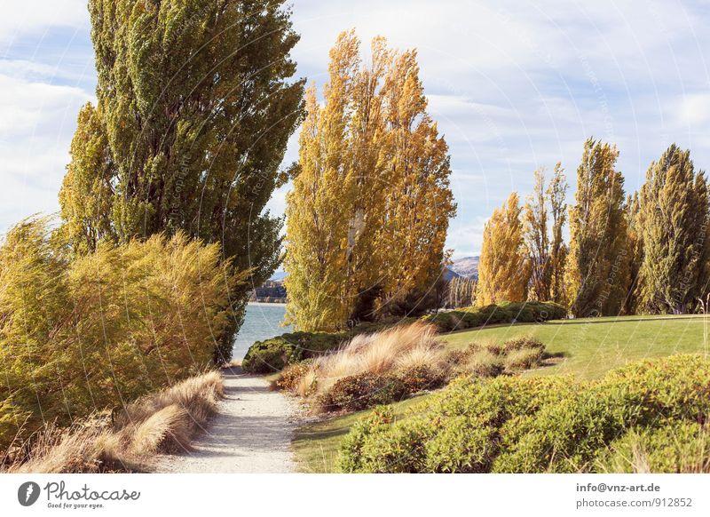 Herbsttag Himmel Natur Pflanze Wasser Baum Landschaft Tier Umwelt gelb Wärme Wiese Gras Garten Park Wetter