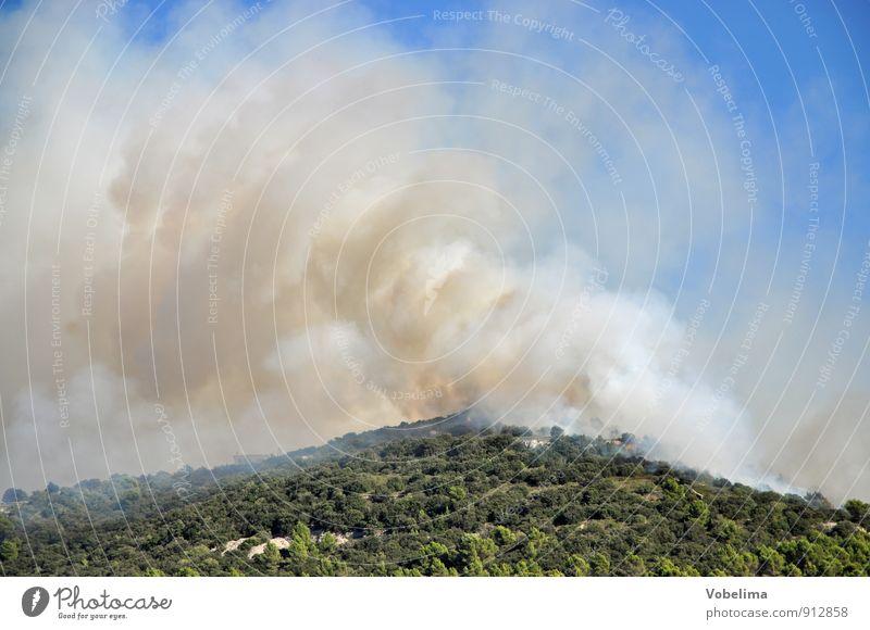 Waldbrand auf Mallorca Berge u. Gebirge Umwelt Natur Landschaft Urelemente Feuer Himmel Wärme Dürre Gipfel Rauch bedrohlich blau braun grün Angst gefährlich