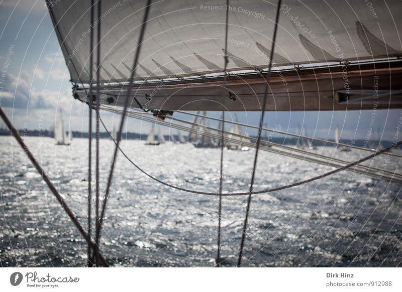 Classic-Regatta Ferien & Urlaub & Reisen Sommer Meer Segeln Wasser Horizont Sportboot Jacht Segelboot Segelschiff An Bord Unendlichkeit Stimmung Zusammensein