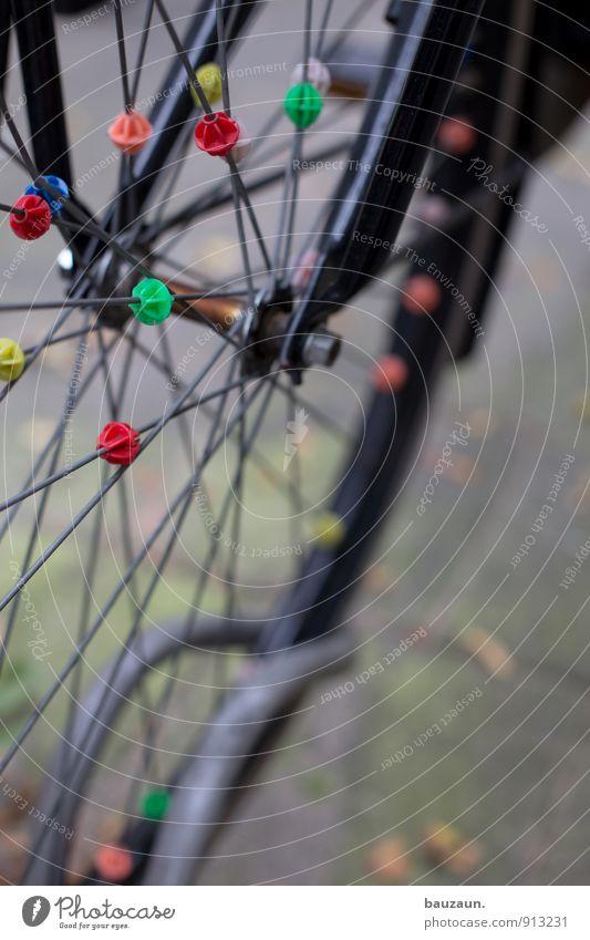 zusammen. Freizeit & Hobby Fahrradfahren Stadt Verkehr Straße Wege & Pfade Fahrradständer Fahrradreifen Speichen Metall Kunststoff Kugel Linie stehen trendy