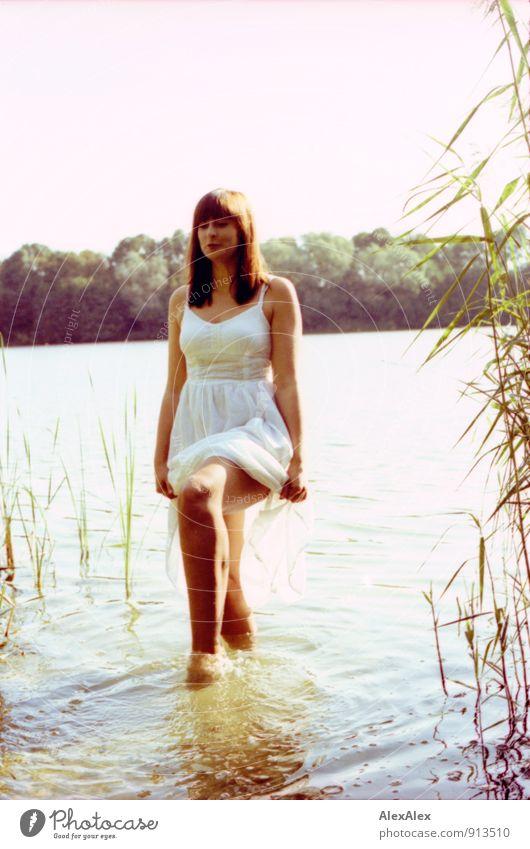 gleich wird's nass! Abenteuer Sommer Sommerurlaub Junge Frau Jugendliche 18-30 Jahre Erwachsene Natur Schönes Wetter Baum Schilfrohr Seeufer Kleid langhaarig