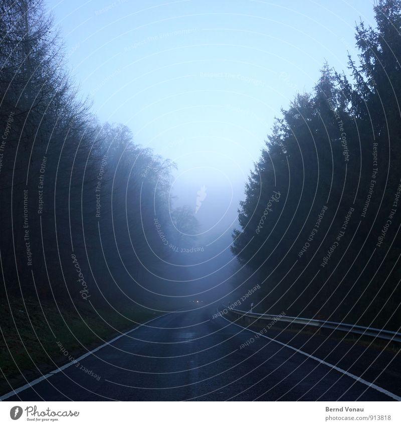 Flucht. Himmel Wetter Nebel Regen Baum Wald Hügel Verkehr Straße PKW Schilder & Markierungen Linie nass blau schwarz weiß Perspektive Autoscheinwerfer