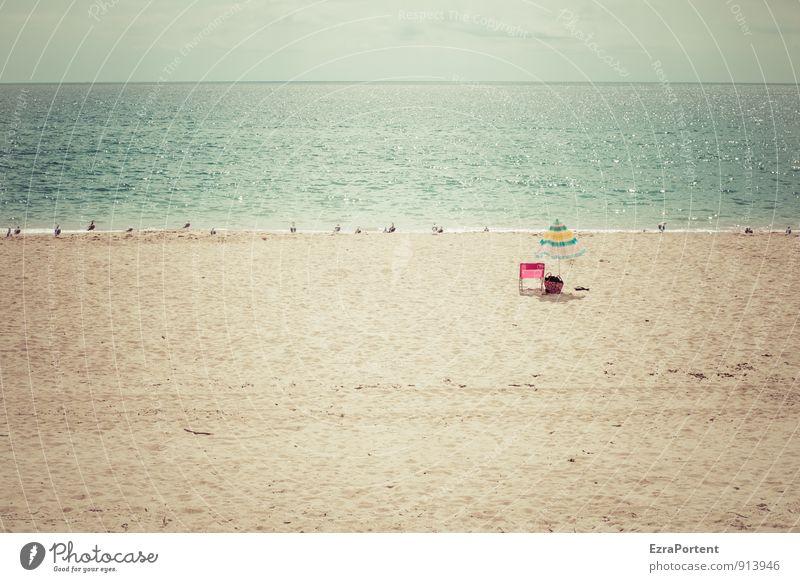 ................. |^... Himmel Natur Ferien & Urlaub & Reisen blau Sommer Sonne Erholung Meer Landschaft ruhig Tier Strand Ferne gelb Wärme Freiheit