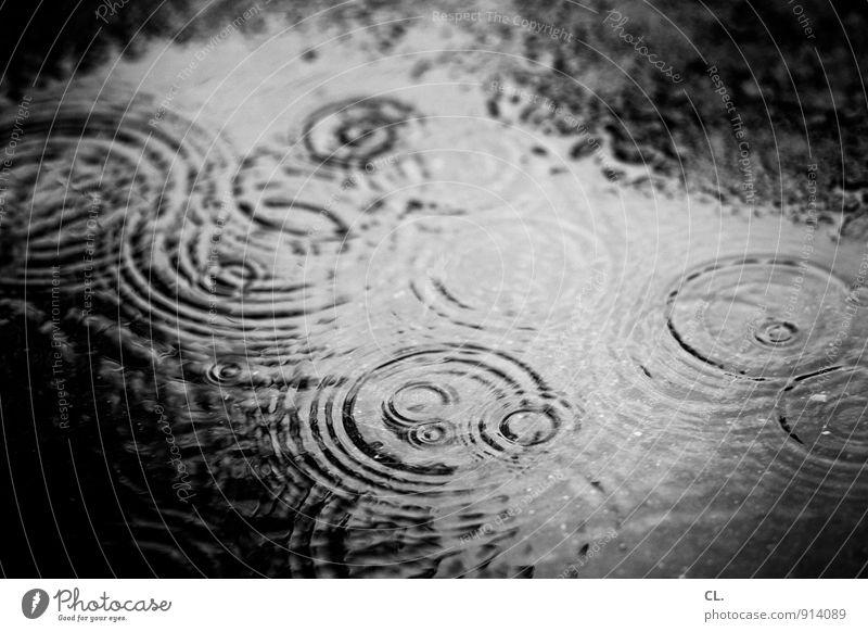 regen Umwelt Natur Urelemente Wasser Herbst Klima Klimawandel Wetter schlechtes Wetter Regen Straße dunkel nass trist Traurigkeit Fernweh herbstlich