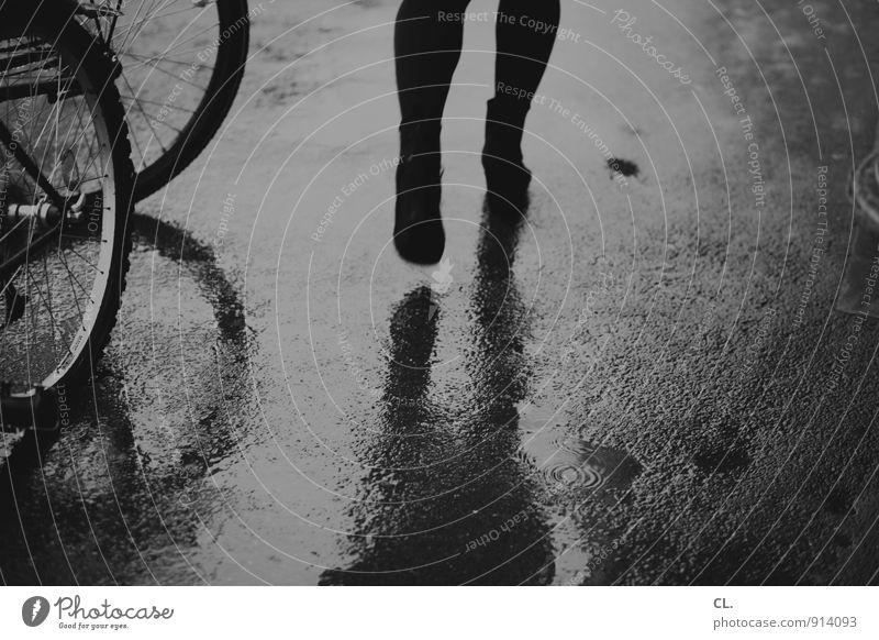 herbststraße Mensch Erwachsene Leben Beine 1 Umwelt Herbst Klima schlechtes Wetter Wind Sturm Regen Verkehr Verkehrswege Fußgänger Straße Wege & Pfade Fahrrad