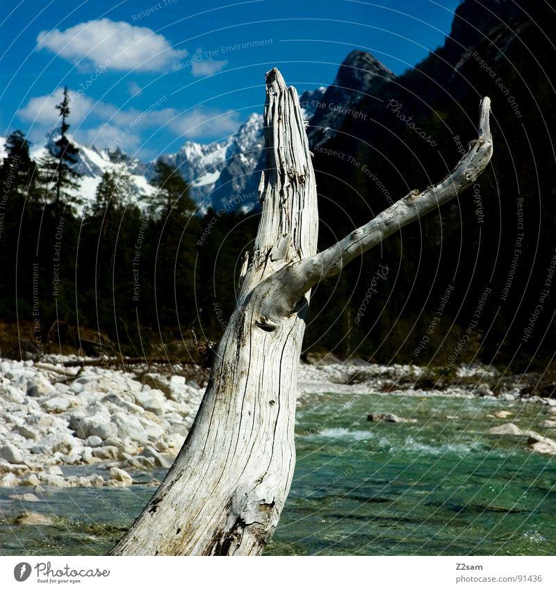 looks like canada Kanada Bayern Bach Wald Baum Gewässer fließen grün Sauberkeit Isar Mittenwald Ferien & Urlaub & Reisen Erholung Wolken Berge u. Gebirge Fluss