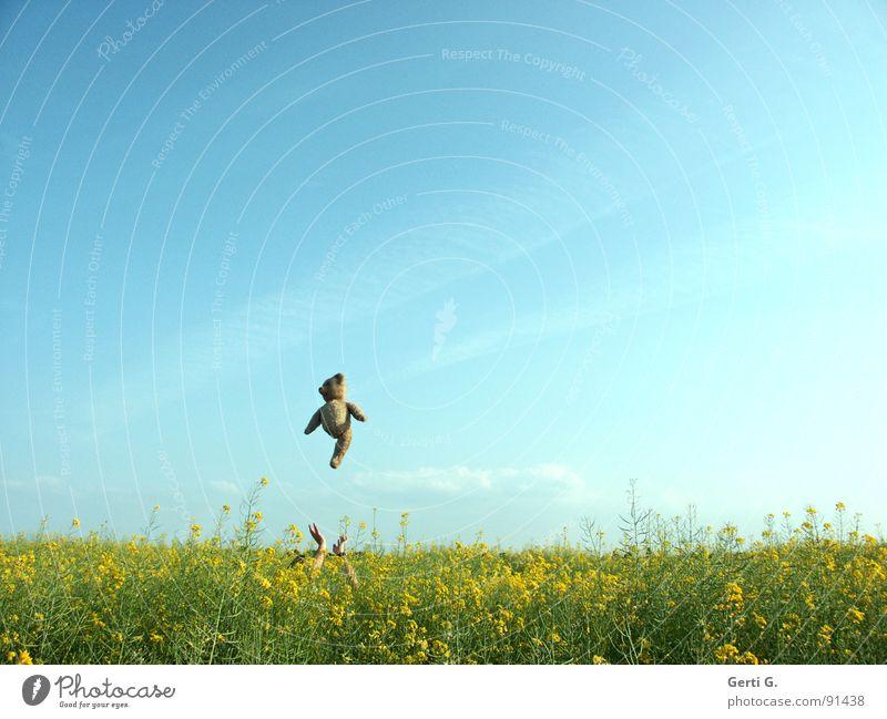 catapult Himmel Hand blau Freude Wolken gelb Sport Spielen springen Glück Landschaft braun lustig Arme fliegen hoch