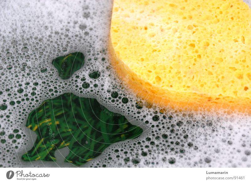 Verspült Wasser grün Freude gelb Spielen Gras Fröhlichkeit Schönes Wetter Küche Freundlichkeit Im Wasser treiben Blase positiv Wasseroberfläche Schaum Haushalt