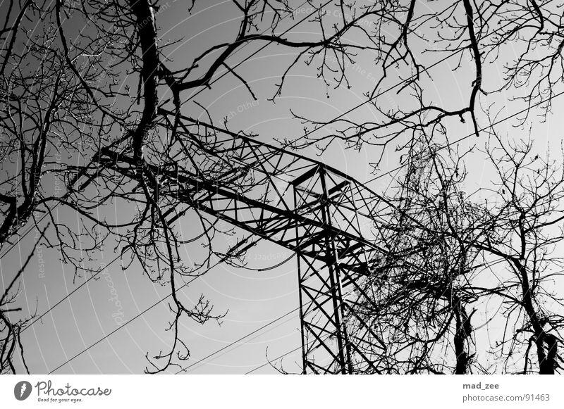 gegensätze... Spielen Strommast einfach Schwarzweißfoto Trauer Verzweiflung Ast Kabel geradlienig Himmel Schönes Wetter
