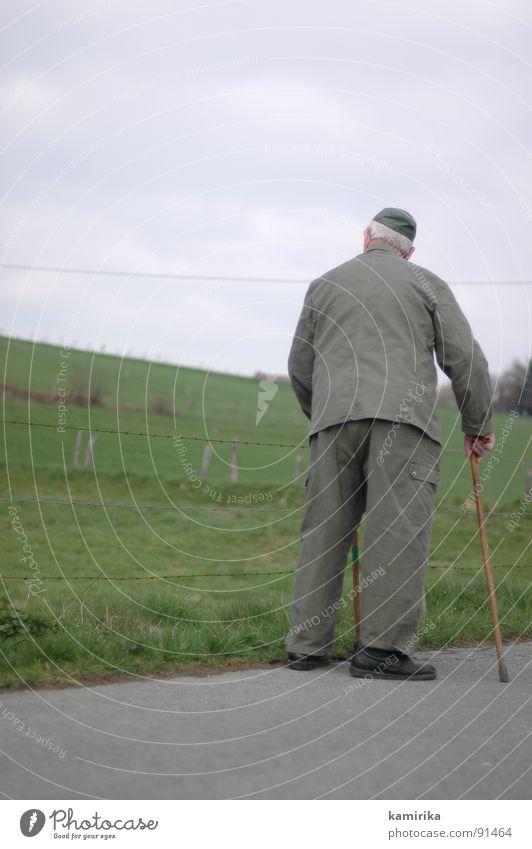 flurfeldwaldwiese alt Wiese Wege & Pfade wandern gehen Spaziergang Gastronomie Landwirtschaft Landwirt Amerika Fußweg Stock Gehhilfe unterwegs