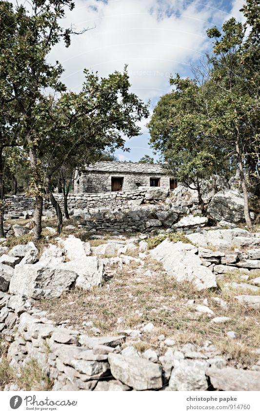 Kleines Eigenheim mit Potential Ferien & Urlaub & Reisen Sommer Sommerurlaub Haus Renovieren Baum Menschenleer Hütte Ruine Gebäude Mauer Wand Stein alt