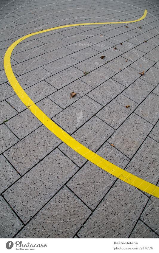 Der Blätterfänger Pflanze schön Blatt Umwelt gelb Straße Herbst grau außergewöhnlich Linie liegen Wetter elegant Wellen leuchten Dekoration & Verzierung