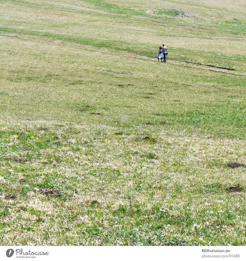 über de wiese Mensch Natur grün Sommer Ferne Wiese Gras Berge u. Gebirge Freiheit Paar Wege & Pfade Landschaft wandern laufen Ausflug Platz