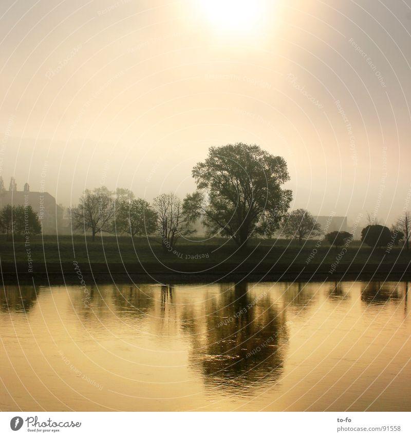 Guten Morgen Elbe Elektrizität Wolken Romantik kalt ruhig Sonnenaufgang Gegenlicht Dresden Fluss Bach Himmel Wasser blau Beginn Graffiti Morgendämmerung