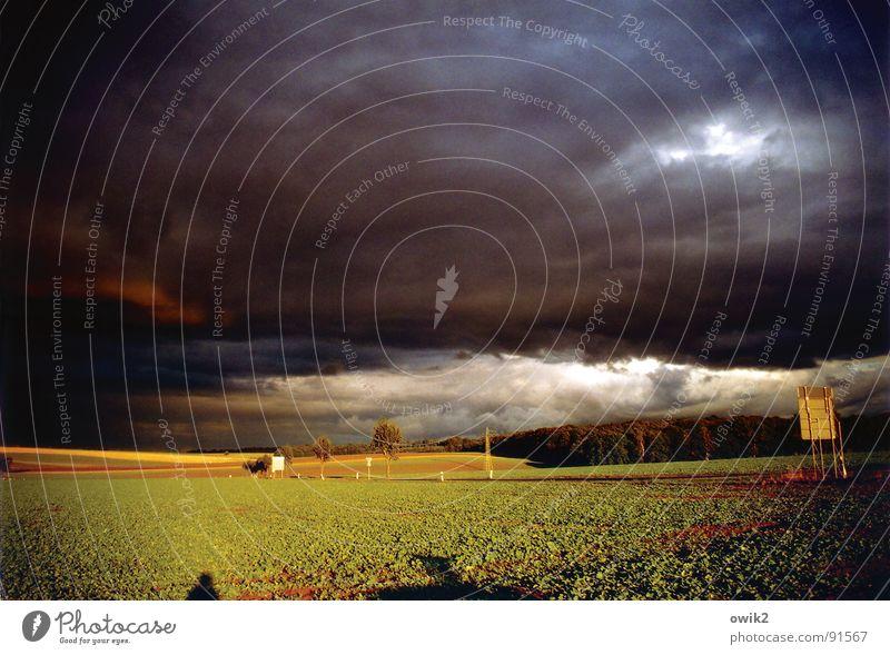 In se great plains of Sachsen Farbfoto Gedeckte Farben Außenaufnahme Menschenleer Textfreiraum oben Tag Dämmerung Licht Schatten Sonnenlicht Panorama (Aussicht)