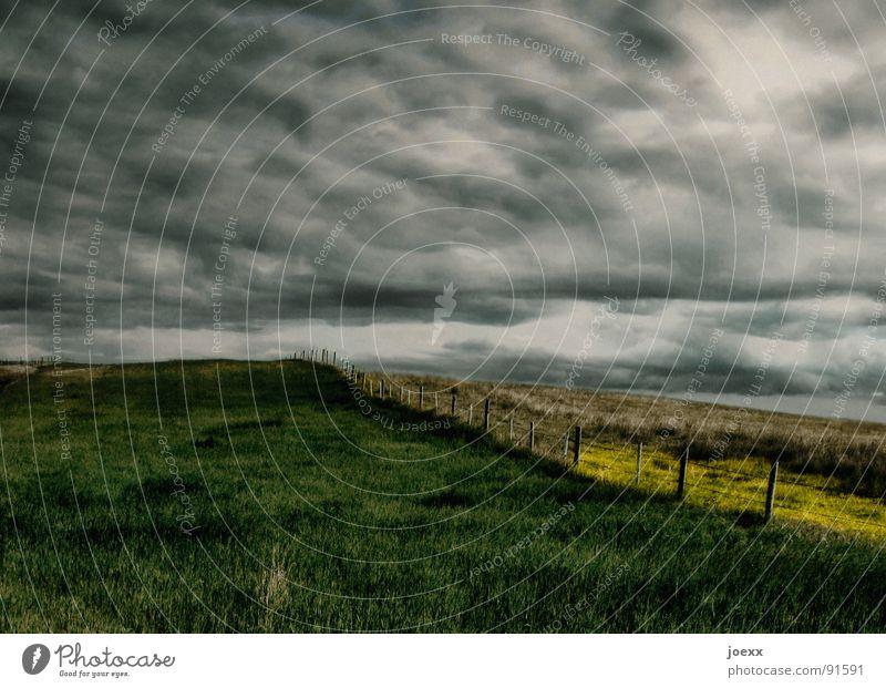 Abgrund abgelegen Feld Angst bedrohlich Wolken dunkel Einsamkeit gelb Gewitterwolken Gras grau grün Horizont Landwirtschaft Lichtstimmung schlechtes Wetter