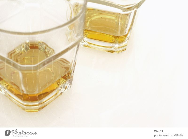 Lowland Single Malt Glas Brand Getränk streichen Alkohol Schottland Spirituosen Whiskey