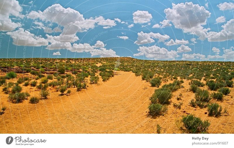 Auf dem Weg zum Hufeisen... Himmel blau Sommer Wolken Wege & Pfade Sand orange USA Sträucher Wüste Arizona Südwest Horseshoe Bend