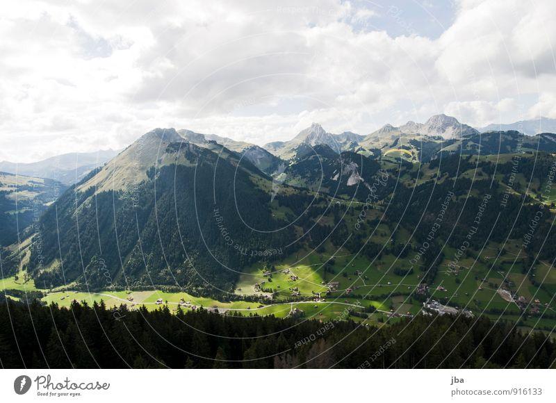 Horizont schräg? Mensch Natur Sommer Erholung Landschaft ruhig Wolken dunkel Wald Berge u. Gebirge Leben Freiheit fliegen maskulin Freizeit & Hobby Ausflug