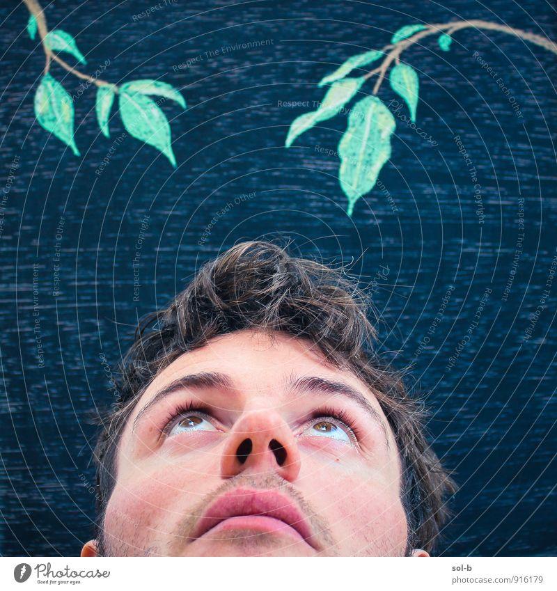 Mensch Natur Jugendliche Baum Blatt Junger Mann 18-30 Jahre Gesunde Ernährung Erwachsene lustig oben Kunst maskulin Kreativität Frieden Gelassenheit