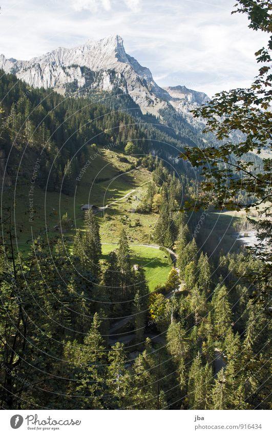 Griesalp / Tschingel Natur Ferien & Urlaub & Reisen Sommer Wald Berge u. Gebirge Straße Herbst Felsen Tourismus wandern Ausflug Ast Schönes Wetter einzigartig