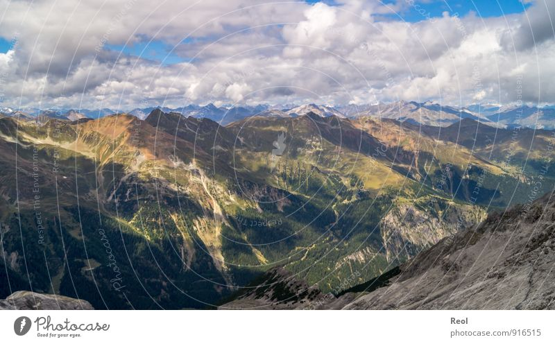 Dem Himmel nah wandern Umwelt Natur Landschaft Urelemente Erde Wolken Wetter Schönes Wetter Baum Wald Alpen Berge u. Gebirge Gipfel Tal Sulden Südtirol atmen