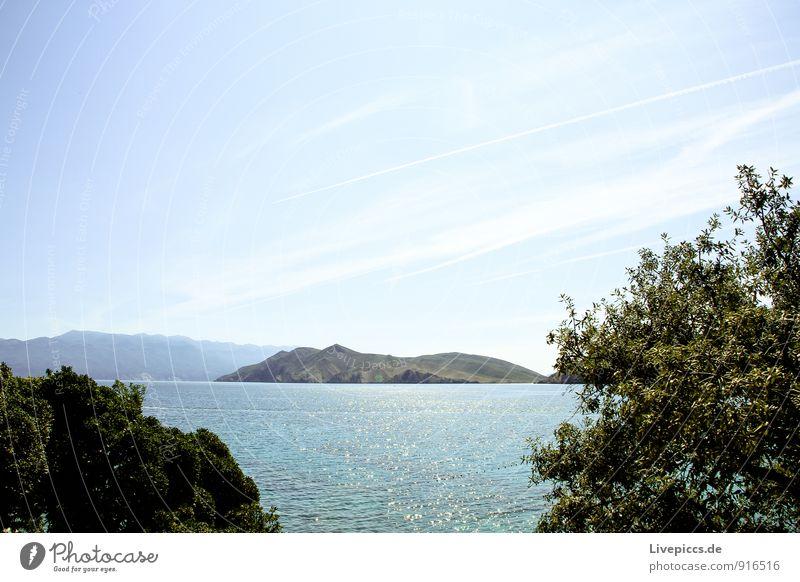 Insel Krk2 Ferien & Urlaub & Reisen Sommer Sommerurlaub Sonne Meer Landschaft Wasser Himmel Sträucher Küste Mittelmeer blau gelb grün türkis weiß Farbfoto
