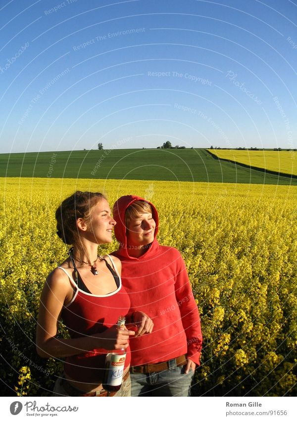 watching the sun Natur Himmel blau Pflanze Freude ruhig gelb Frühling Freiheit Zufriedenheit Feld beobachten Klarheit genießen Raps
