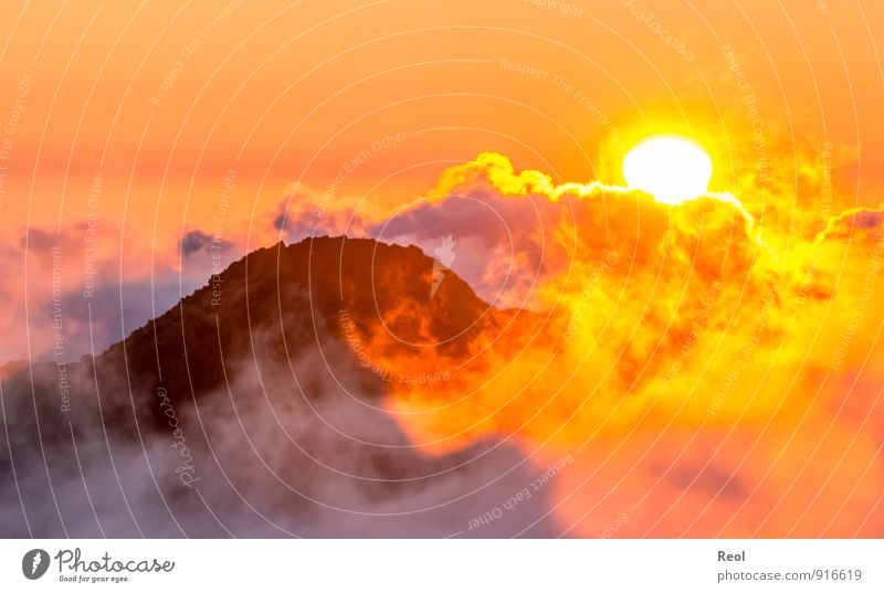 Über den Wolken Natur Landschaft Urelemente Erde Feuer Himmel Sonne Sonnenaufgang Sonnenuntergang Sonnenlicht Sommer Wetter Nebel Hügel Felsen Berge u. Gebirge