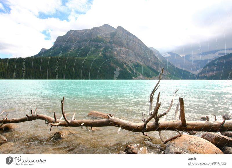 Fernweh-Blues Tourismus Ferne Landschaft Wasser Himmel Wolken Sonnenlicht Sommer Schönes Wetter Pflanze Baum Nadelbaum Wald Felsen Berge u. Gebirge