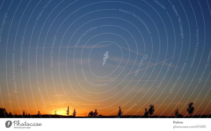 Da brennt's!!! Sonnenuntergang Dämmerung Unendlichkeit dunkel Silhouette Sehnsucht Abenddämmerung Horizont Kondensstreifen Baum Nacht Wolken durcheinander