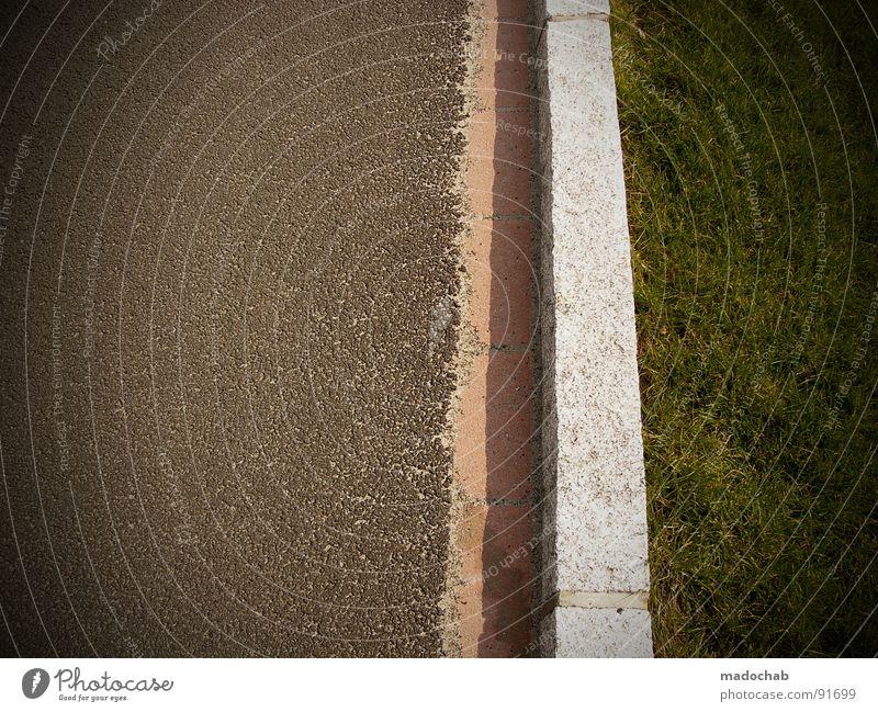 SCHAIZ AUF POLITICAL CORRECTNESS Muster Geometrie Am Rand Wiese Gras Natur grün Asphalt graphisch Verkehr gefährlich Schilder & Markierungen Linie line
