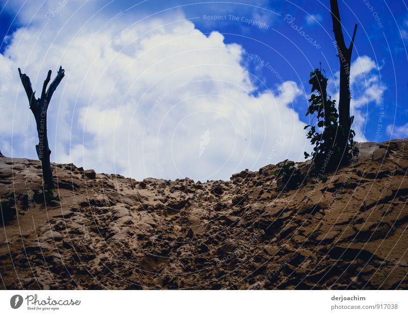 Dünenpfad , Dünenweg zum Strand. Blauer Himmel mit weißen Wolken .Rainbow Beach. Queensland / Australia Freude Erholung Freizeit & Hobby