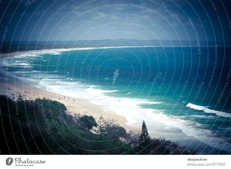Dünenblick blau Wasser Sommer Erholung Meer ruhig Wolken Freude Strand Umwelt Sand Freizeit & Hobby Sträucher Ausflug genießen beobachten