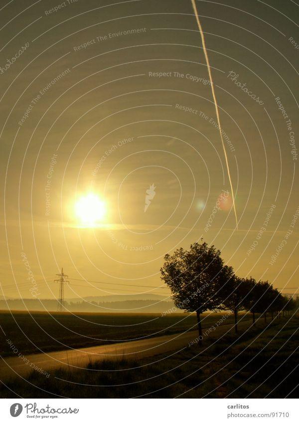 bis zum Horizont Allee Landstraße Morgen Morgennebel Sonnenaufgang Gegenlicht blenden Baum Silhouette Hügel Abstufung Arbeitsweg Strommast Sonnenenergie
