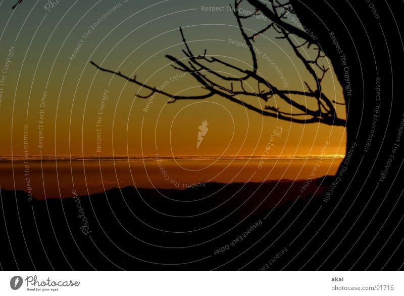Abendrot am Schauinsland schön Sonne Ferien & Urlaub & Reisen Gefühle Berge u. Gebirge orange groß Sonnenbad Abenddämmerung Planet Schwarzwald gemalt