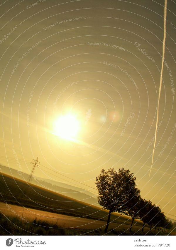 Sie kippt !! Allee Landstraße Morgen Morgennebel Sonnenaufgang Gegenlicht blenden Baum Silhouette Hügel Abstufung Arbeitsweg Strommast Sonnenenergie