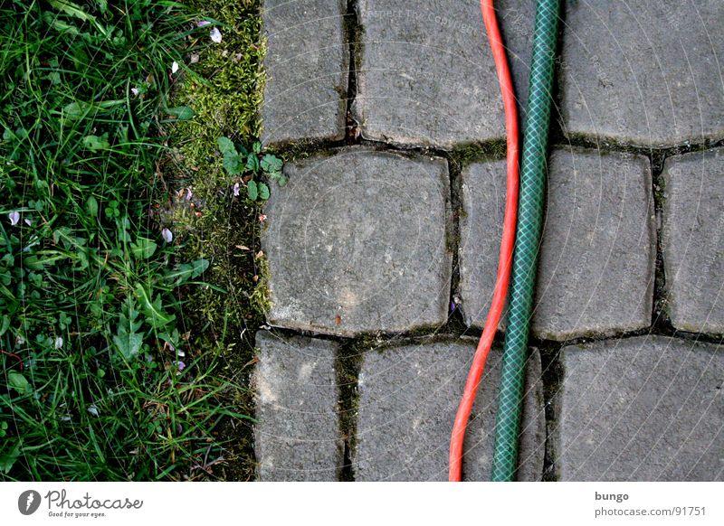 Struktur Wiese Gras Garten Stein Kommunizieren Kabel Bodenbelag Löwenzahn Teilung Kopfsteinpflaster Furche Schlauch verbinden graphisch Spalte biegen
