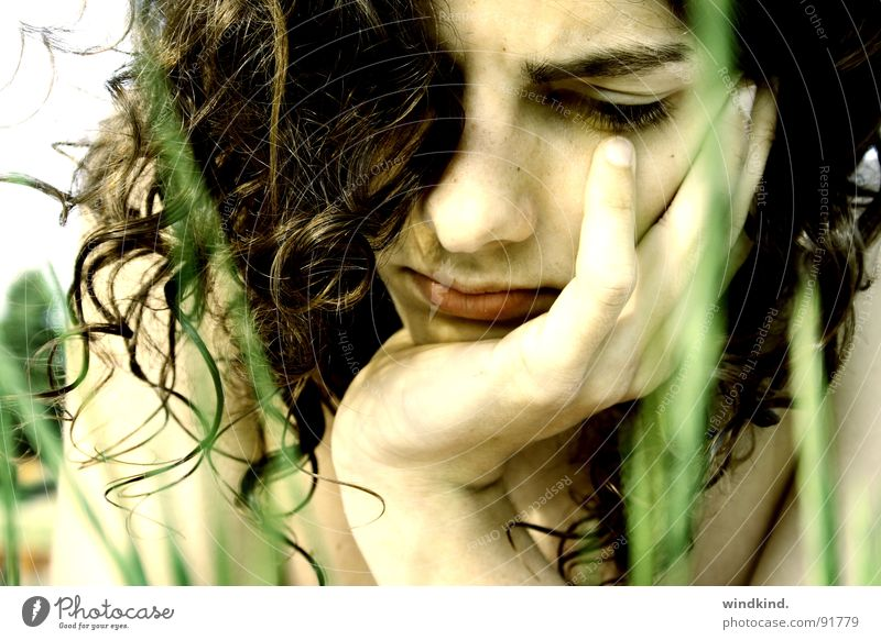 Wenn du liest braun grün Wiese Gras Halm Sommer lesen Physik lockig Wind Brise untergehen gefesselt Jugendliche Konzentration Locken Haare & Frisuren Haut Sonne
