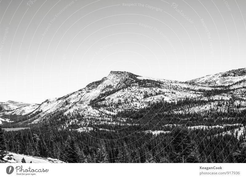 Yosemit Umwelt Natur Landschaft Erde Himmel Wolkenloser Himmel Horizont Winter Klima Wetter Schönes Wetter Eis Frost Schnee Schneefall Baum Wald Felsen