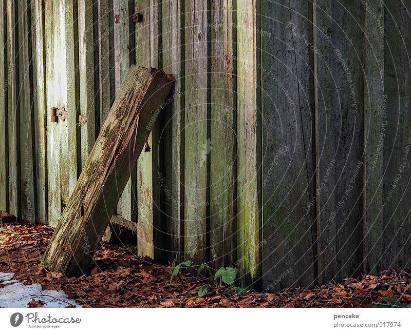 in anlehnung Natur Urelemente Erde Herbst Winter Wald Hütte Zeichen Gefühle Stimmung demütig Müdigkeit Zufriedenheit ruhig Schwerpunkt Herbstlaub morsch Balken