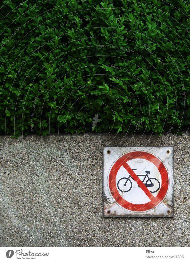 Scheiß auf Umweltschutz! rot Bewegung Mauer Fahrrad Schilder & Markierungen gegen Klimawandel bewegungslos Umweltverschmutzung Hecke ungesund üppig (Wuchs)