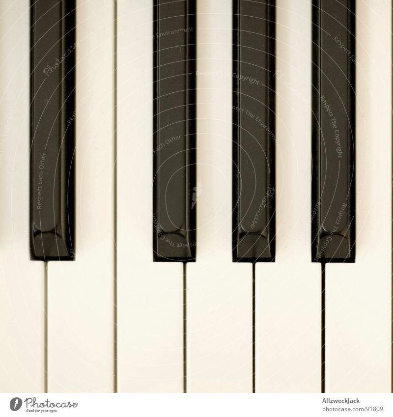 Kla4 Klavier Tasteninstrumente schwarz weiß Klavier spielen Spielen komponieren Klimpern Musik Dynamik Kunst Kunsthandwerk Konzert Zufriedenheit berühren Flügel