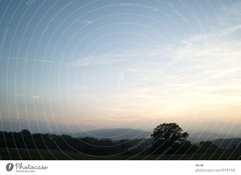 Abenddämmerung Himmel Horizont Sonnenaufgang Sonnenuntergang Herbst Schönes Wetter Baum Park Hügel Berge u. Gebirge Wienerwald Ferne blau gold schwarz Fernweh
