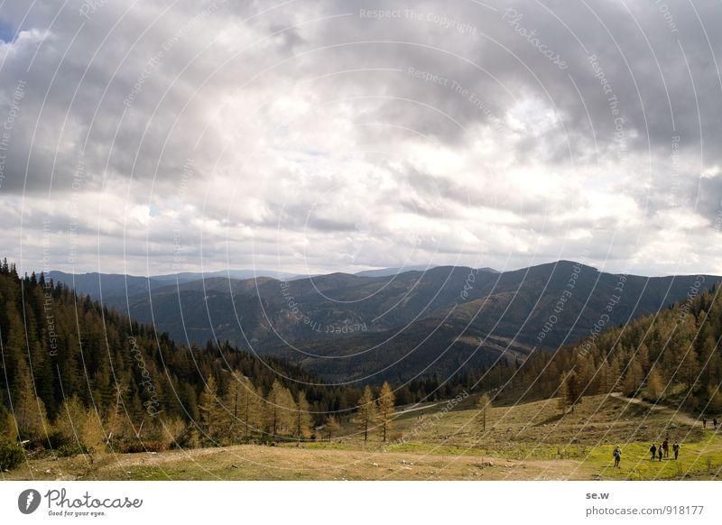 Herbstwanderung Berge u. Gebirge wandern 5 Mensch Landschaft Urelemente Wolken Schönes Wetter schlechtes Wetter Lärche Wald Alpen Rax Alm dunkel Stimmung