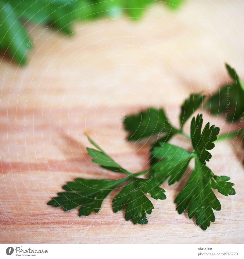 Grünzeug Lebensmittel Kräuter & Gewürze Petersilie Ernährung Bioprodukte lecker grün Farbfoto Innenaufnahme Menschenleer Textfreiraum links Textfreiraum oben